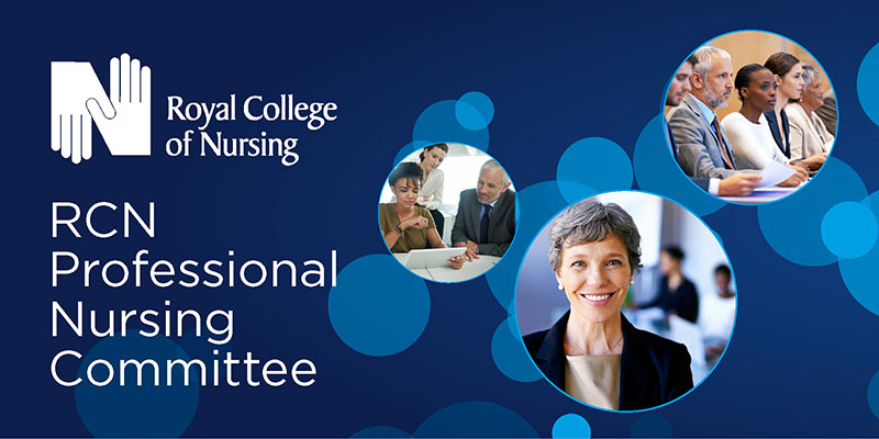 Professional Nursing Committee