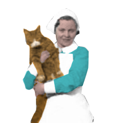 Nurse With Cat