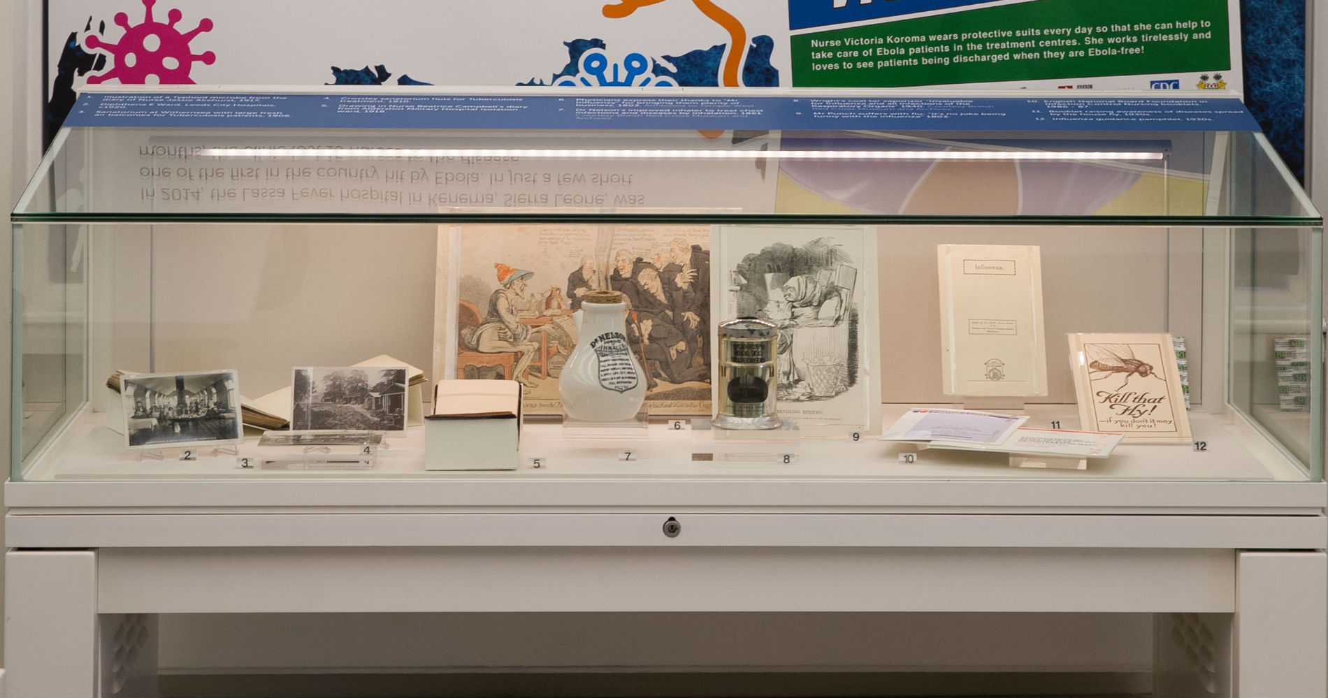 Pandemic exhibition case objects