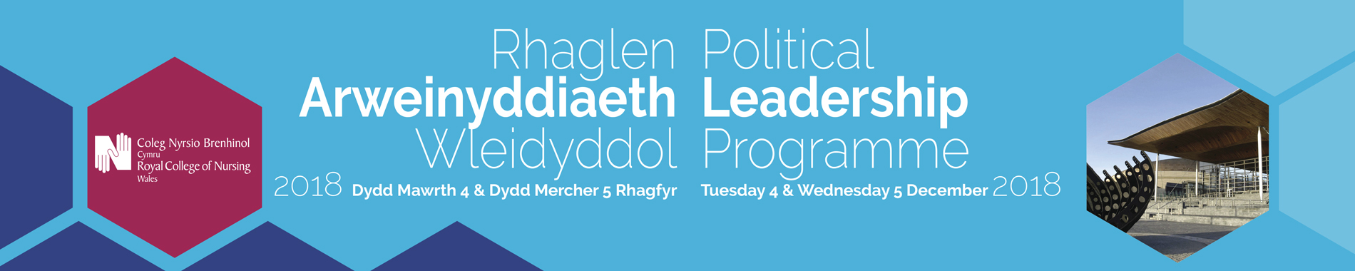 Political Leadership Programme Wales Banner